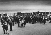 Searchers at Redcar